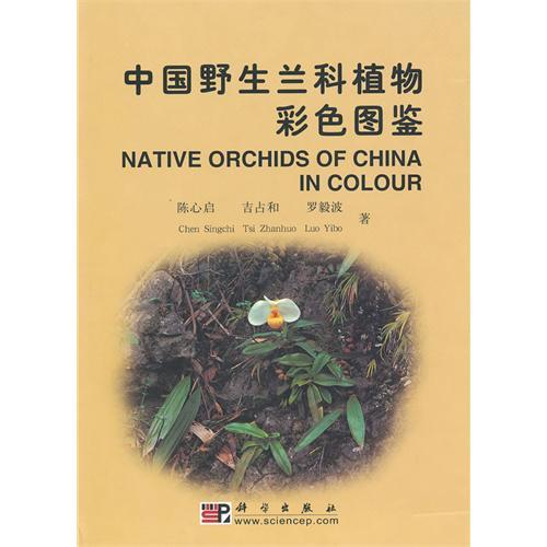 中国野生兰科植物彩色图鉴(上&下).pdf