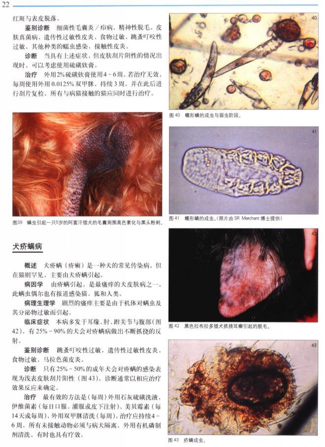 犬猫临床疾病图谱 - (迈克尔.沙尔)编著,林德贵等译.pdf