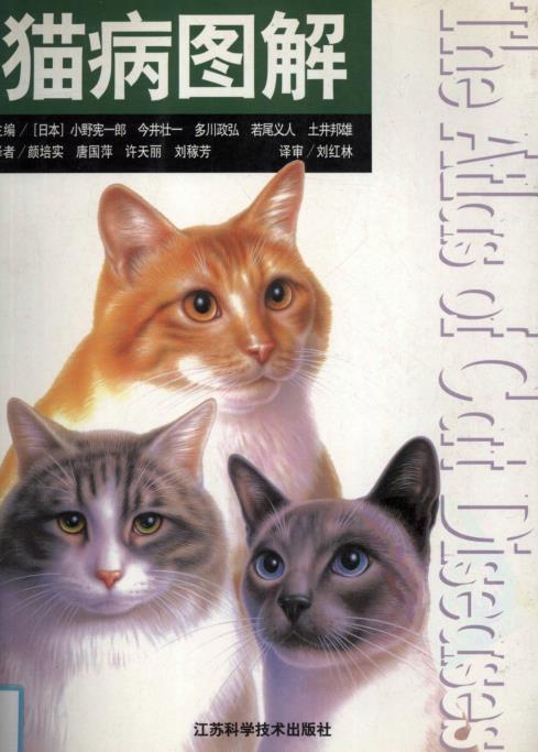 猫病图解.pdf