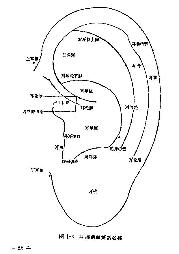 耳穴诊断学.pdf