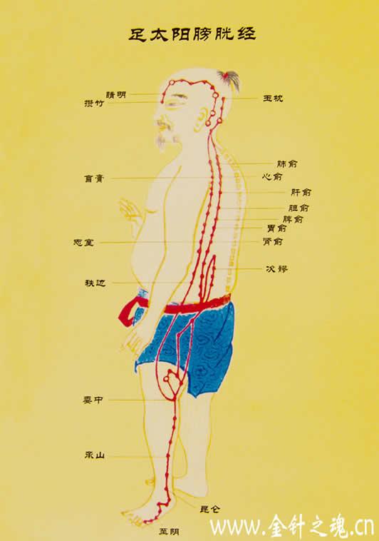 中医基础理论.pdf