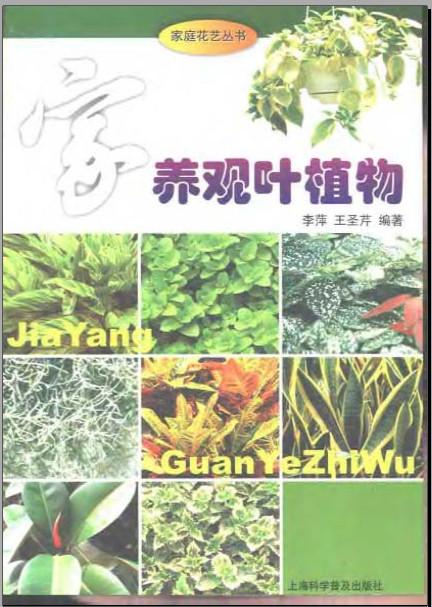 家庭花艺丛书 观叶植物.pdf