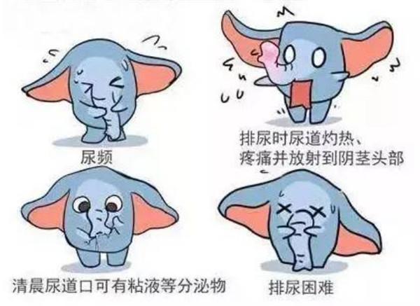 现代名中医男科绝技.陈武山.pdf