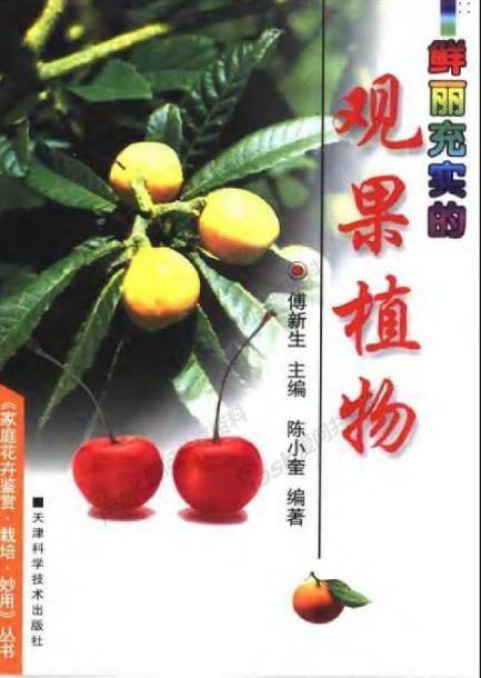 鲜丽充实的观果植物.pdf